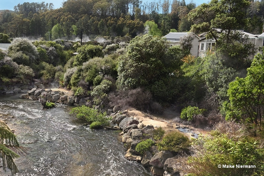 Site of Whakamanu Geyser at Puarenga Stream