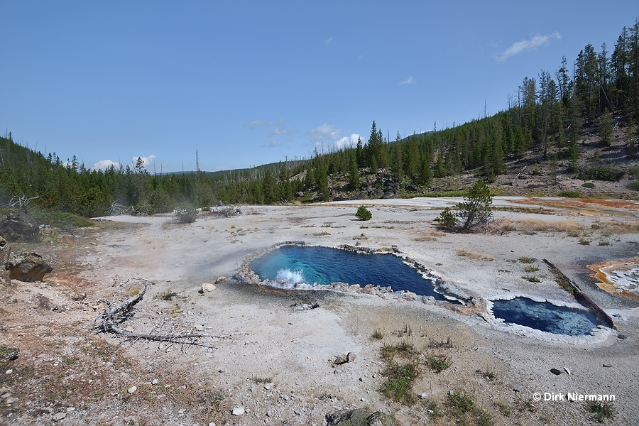 Bat Pool Yellowstone
