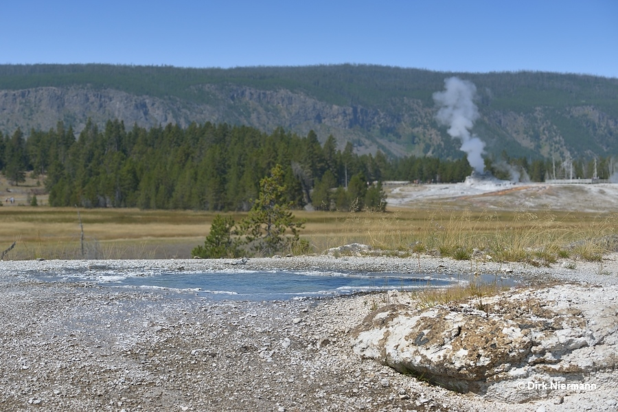 Arrowhead Spring Yellowstone