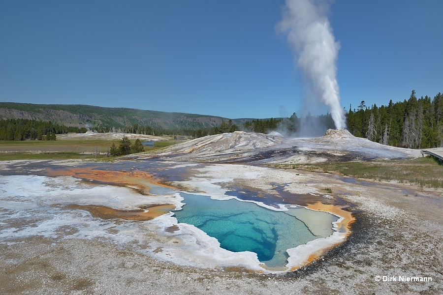Heart Spring and Lion Geyser Yellowstone