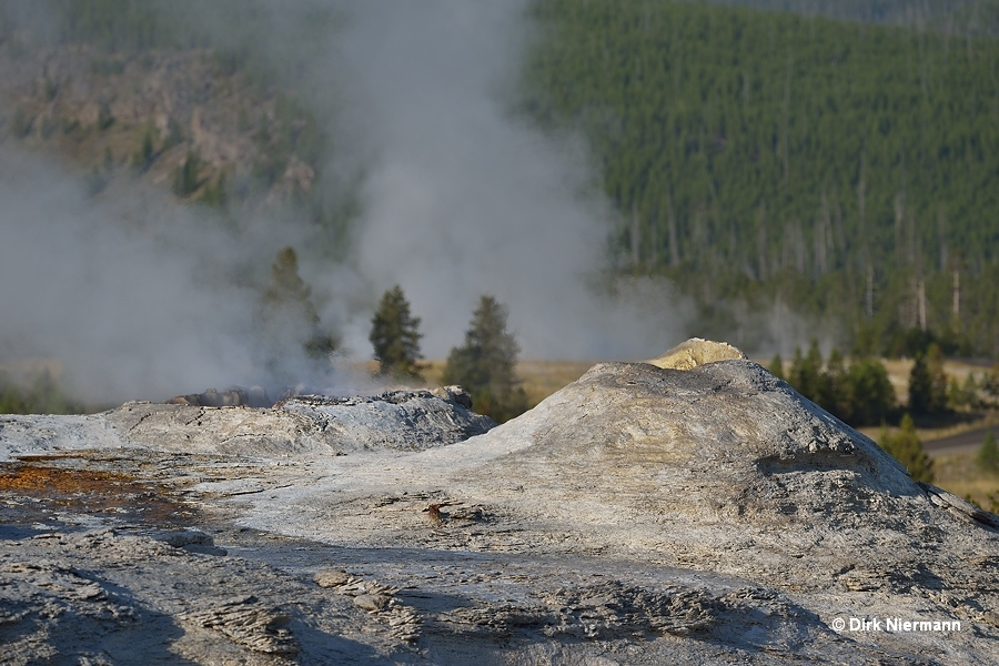 Lioness Geyser and Big Cub Geyser Yellowstone