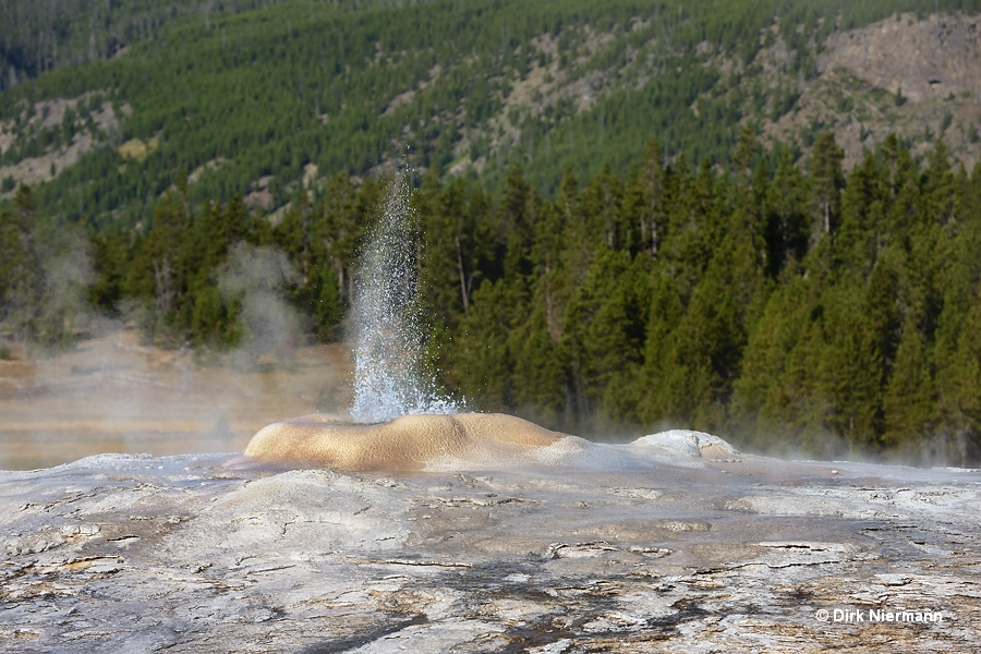 Little Cub Geyser Yellowstone