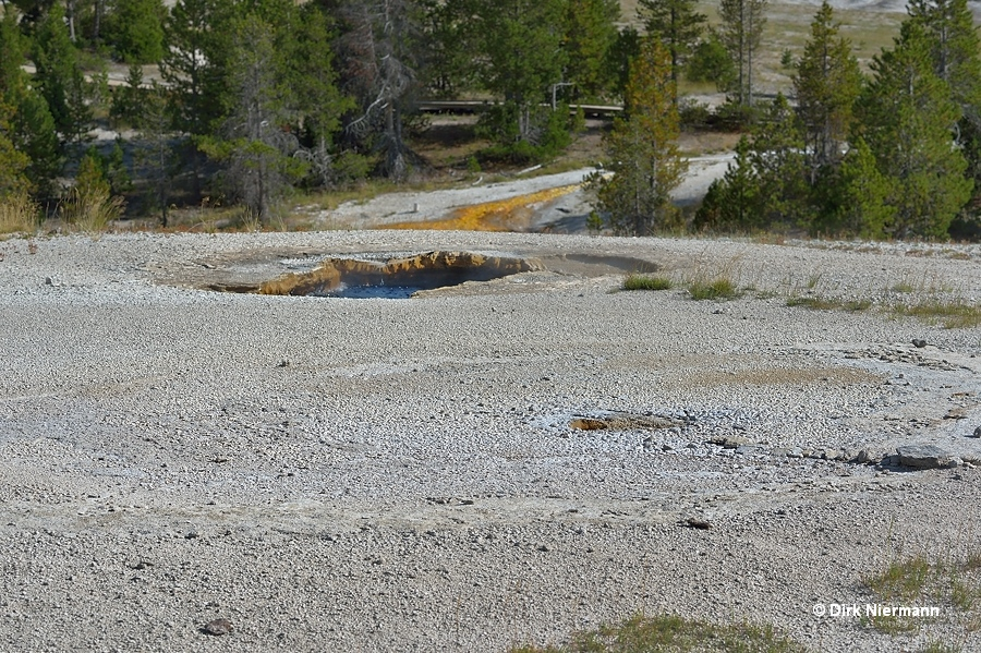 Little Squirt Geyser and Silver Spring Yellowstone
