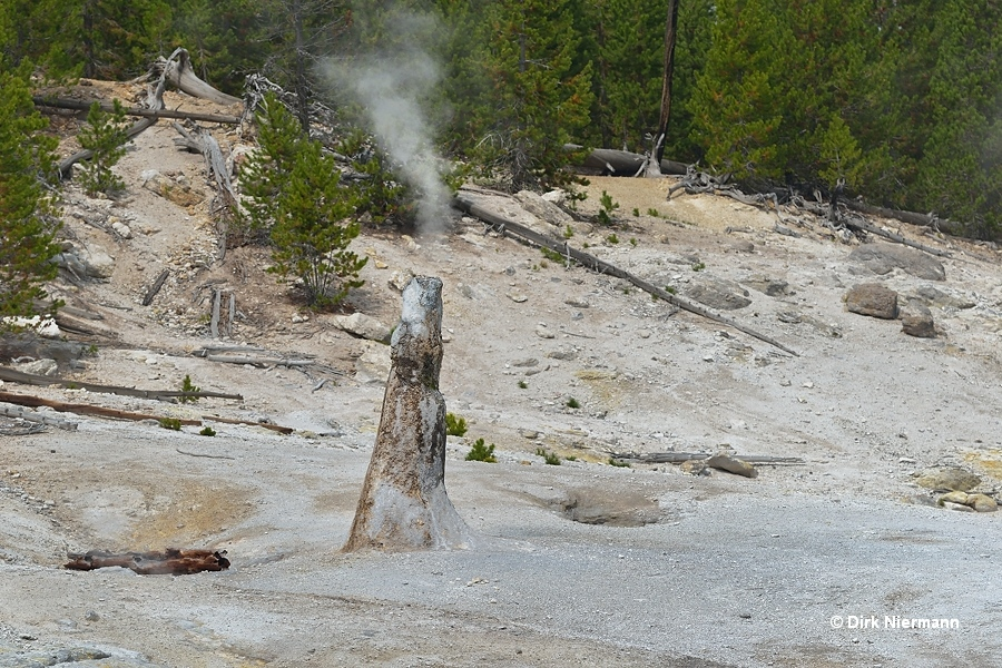 Monument Geyser Thermos Bottle Geyser Yellowstone