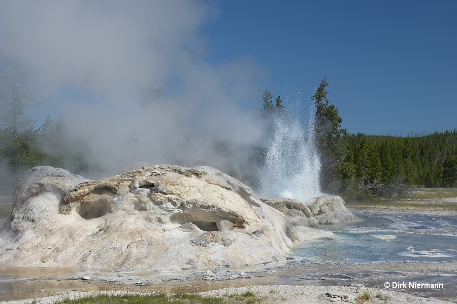 Rocket Geyser Yellowstone