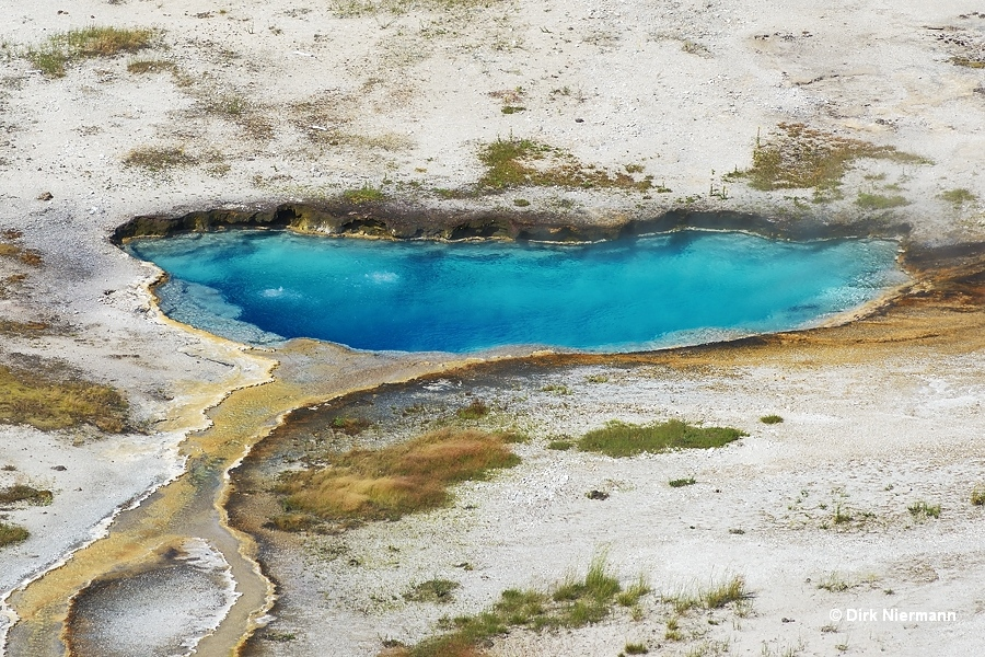 Indigo Spring Yellowstone