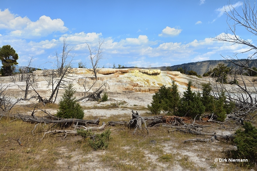 Aphrodite Terrace, Mammoth Hot Springs
