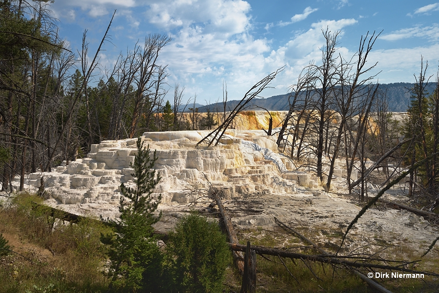 Cheops Mound Mammoth Hot Springs Yellowstone