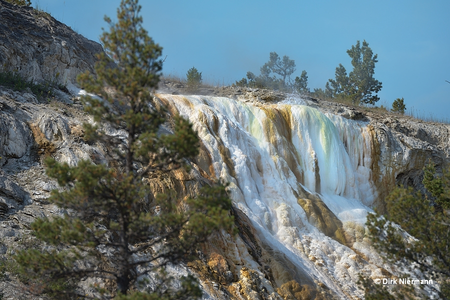 New Highland Spring Mammoth Hot Springs Yellowstone