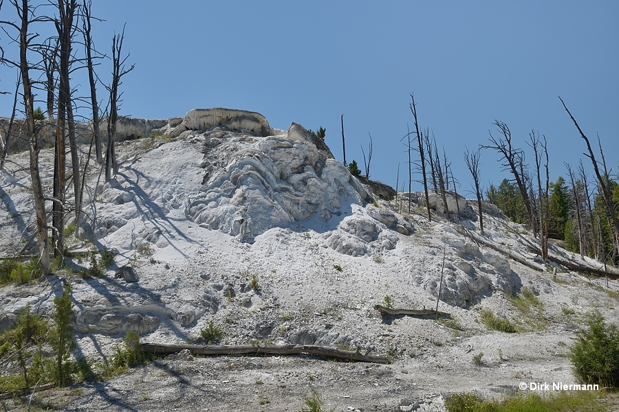 New Highland Terrace Mammoth Hot Springs Yellowstone