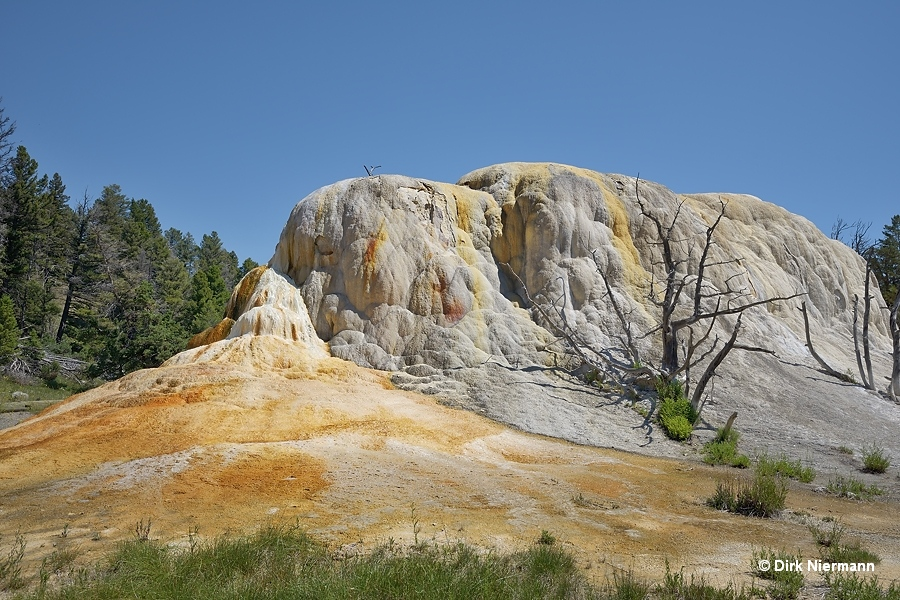 Orange Spring Mound Mammoth Hot Springs Yellowstone
