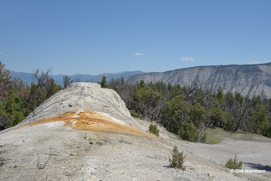 White Elephant Back Terrace Mammoth Hot Springs Yellowstone