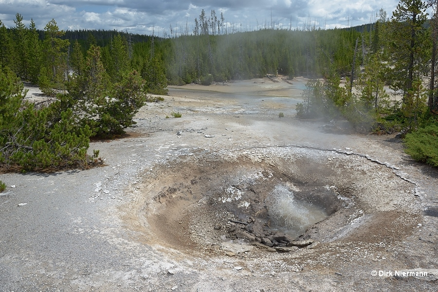 Yellow Funnel Spring Yellowstone