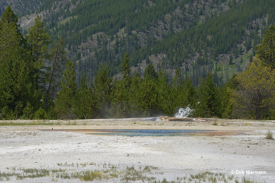 Orange Spring and Pulsar Spouter Yellowstone