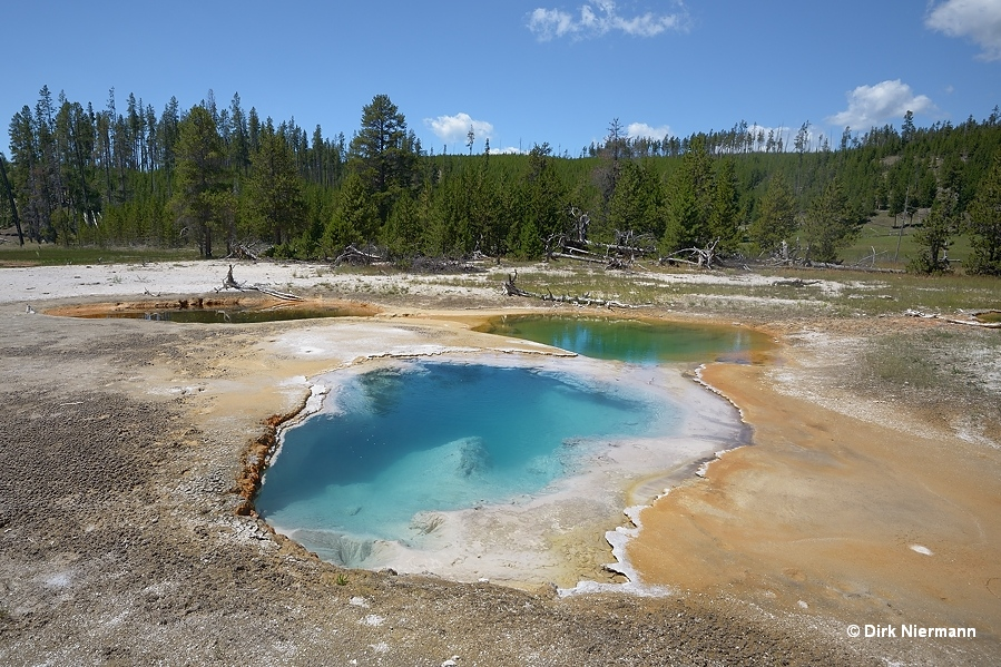 Rabbit Creek hot spring MNN028 Yellowstone
