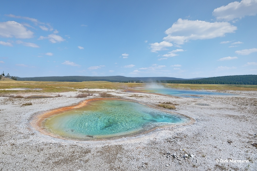 Lightsocket Geyser and Spectrum Spring Yellowstone