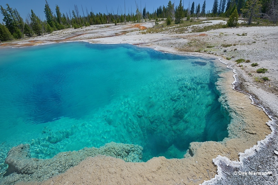 Black Pool Yellowstone