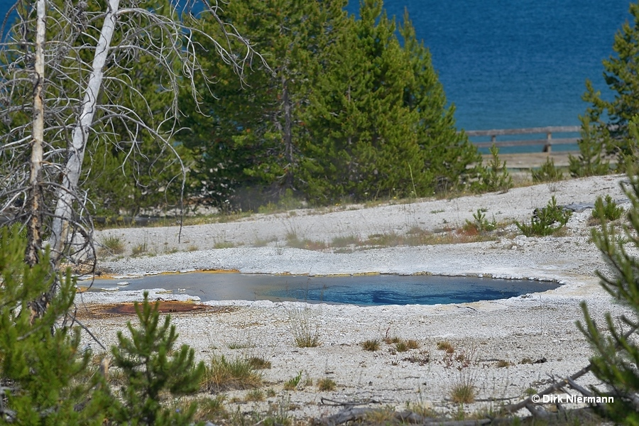Hillside Geyser West Thumb Basin Yellowstone